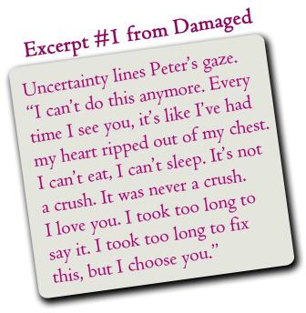 Damaged_Excerpt1