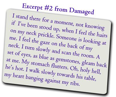 Damaged_Excerpt2